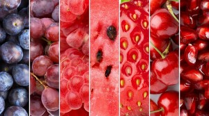 greenberry-collection-fruits-rouges-and-red-fruits